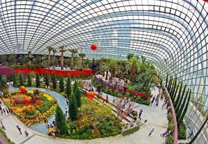 Der Flower Dome in Singapur