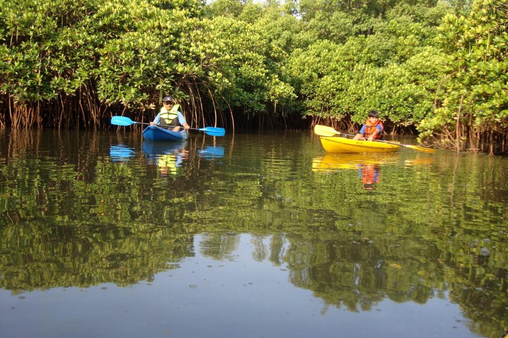 Mein Schiff Ausflug: Kayaking auf dem Sal-Fluss