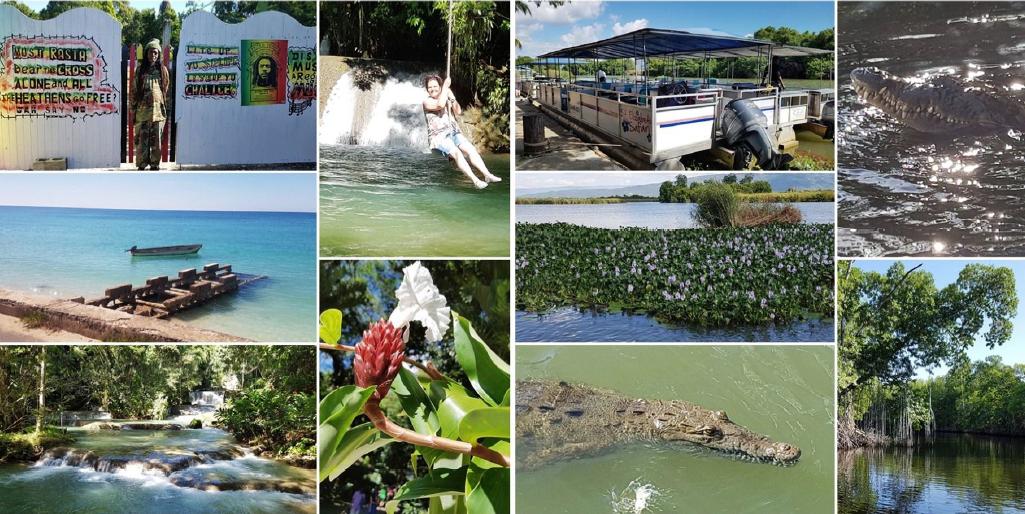 Montego Bay/Jamaika: YS-Wasserfälle und Black River Bootsfahrt