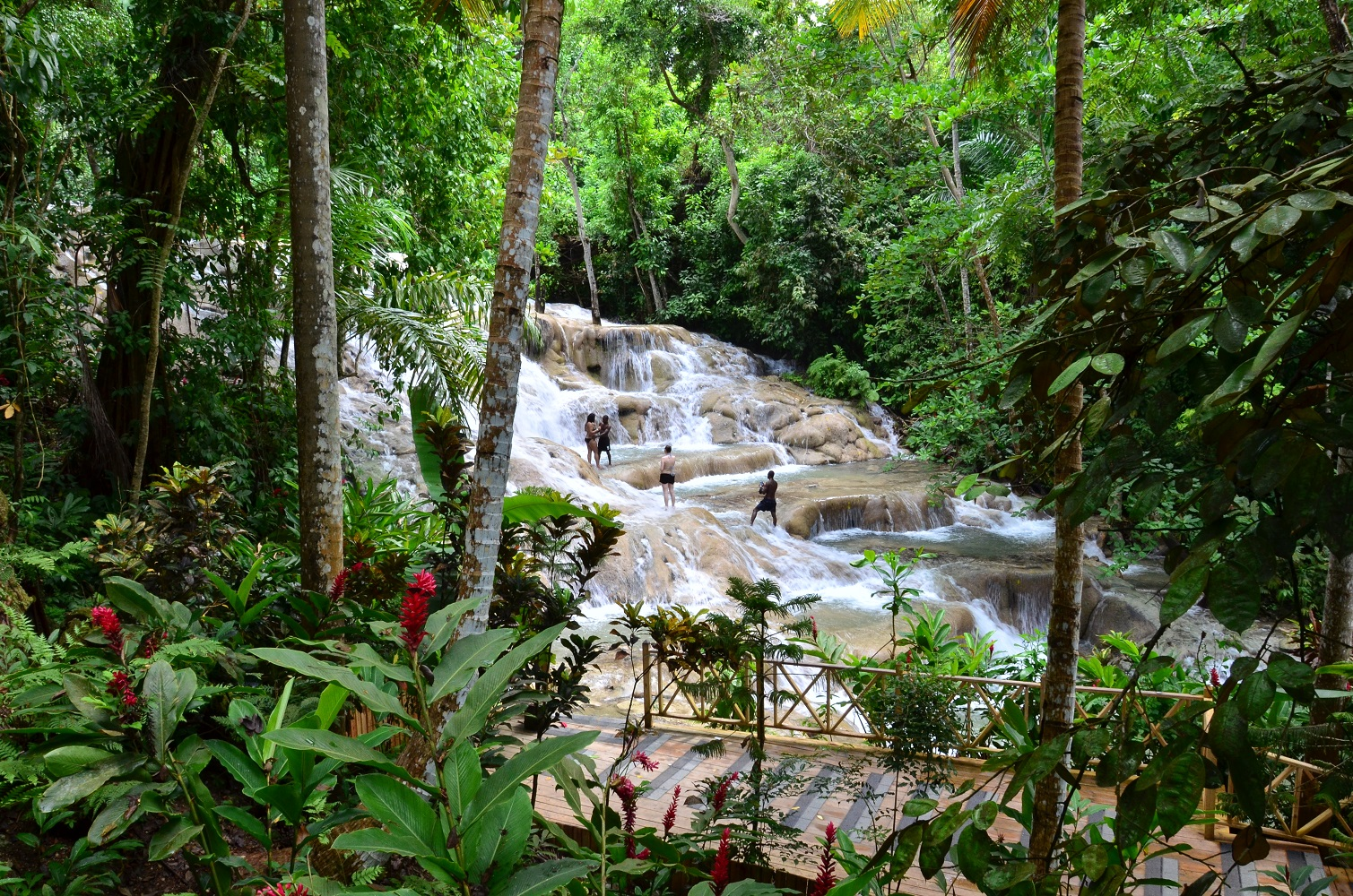 Dunn's River Falls - Ocho Rios - Jamaika