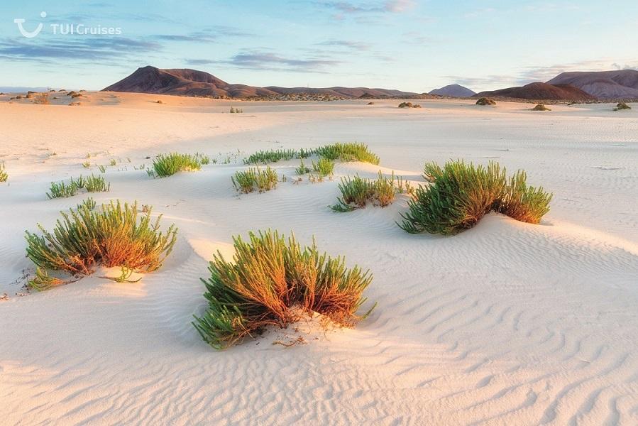 Die Sanddünen von Corralejo auf Fuertventura