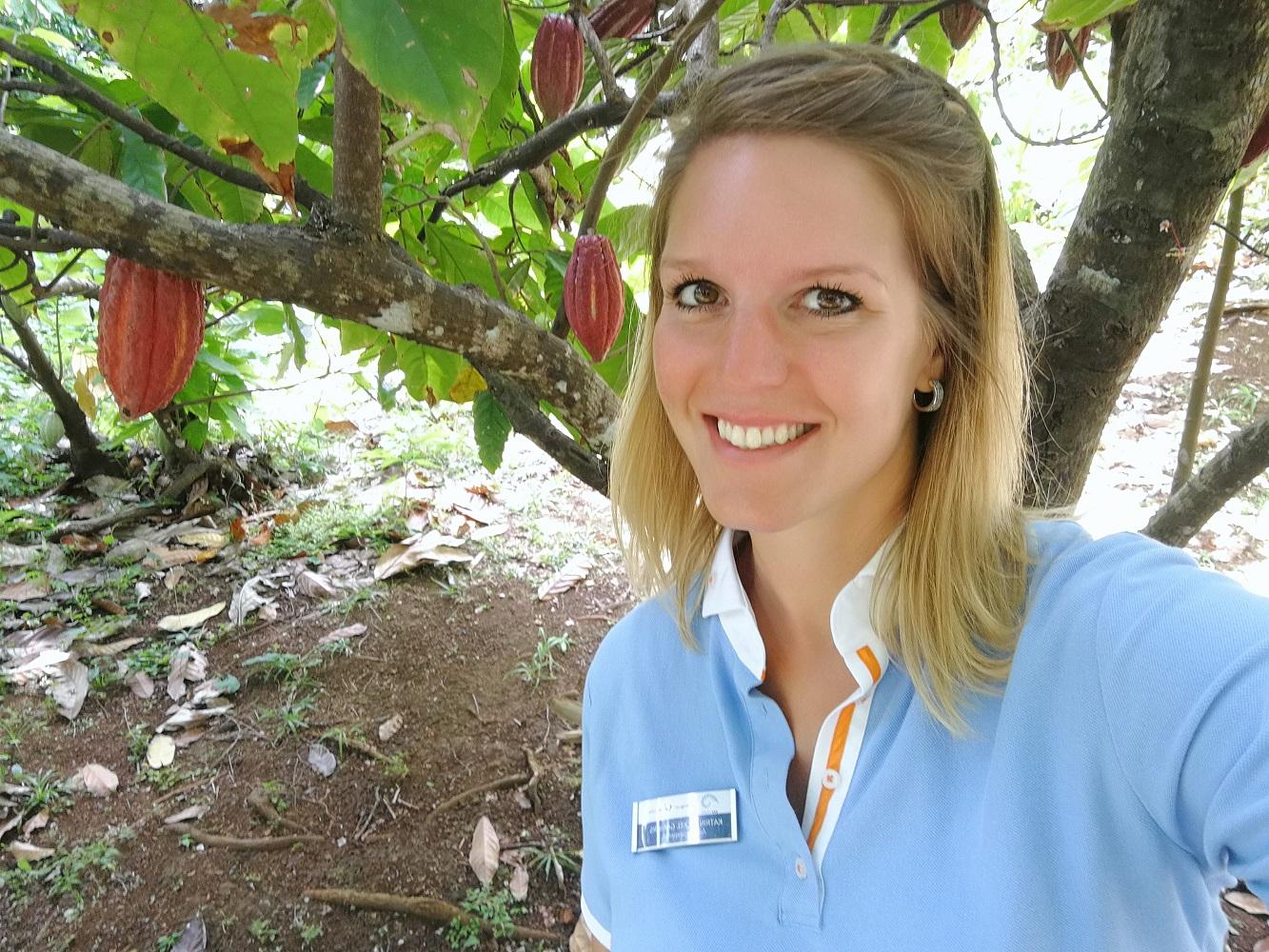 So sehen Kakao-Früchte aus: Mein Schiff Blog Autorin Katrin Mickel Garbers