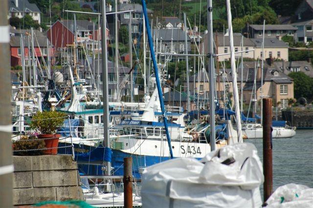 Mein Schiff Ausflug: Blick auf den Hafen von Kinsale