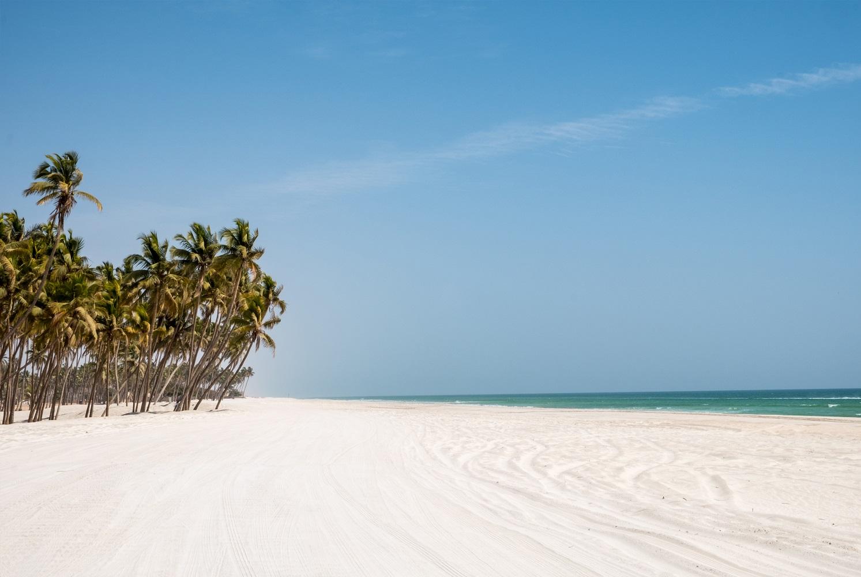 """Das Mein Schiff Reiseziel Salalah wird auch """"Karibik des Orients"""" genannt"""