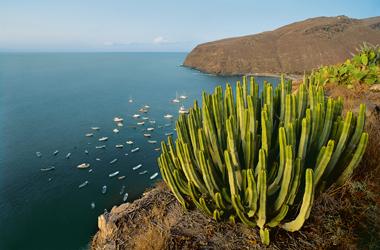 Kanaren mit Lanzarote & Madeira